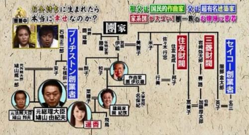 團遥香の家系図2