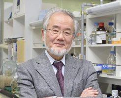 大隅良典ノーベル賞受賞