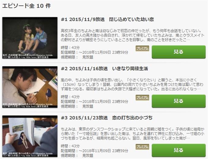 南くんの恋人~my little lover 無料動画視聴