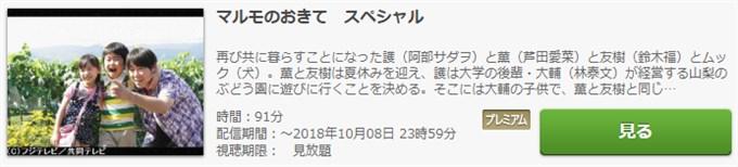 マルモのおきて・スペシャル 動画無料視聴
